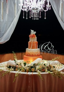 Tulle&Cannella (172)_B