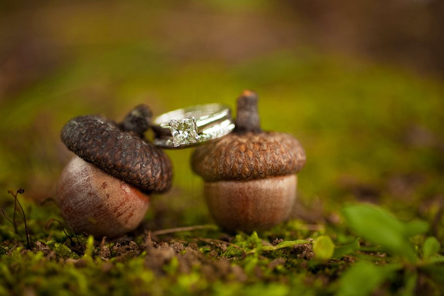Autunno non vuol dire solo zucche... ghiande, rami o pigne, possono essere l'elemento caratterizzante per il vostro matrimonio autunnale - acorninnbb.com