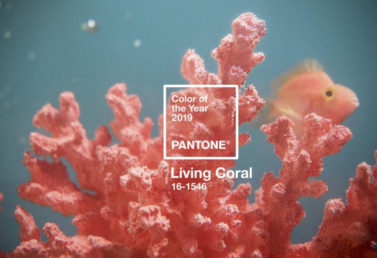 livingcoral_pantone_2019